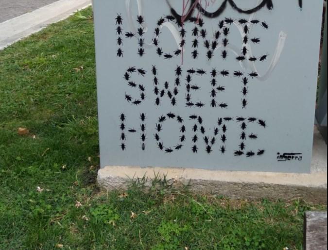 inserra home sweet home stencil bugs